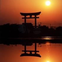 『弥彦神社 大鳥居』≪当館より車で約15分≫