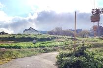 自家菜園_ゲレンデに畑?? 家族が畑仕事中です。