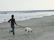 浜辺で散歩