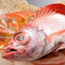 高級魚のど黒