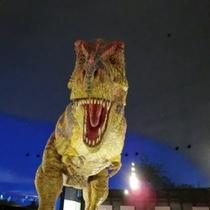 恐竜博物館500