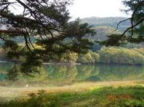 鴫の谷地沼 1
