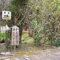 *【かんぽの宿】ご宿泊の方は歩いて5分ほどのかんぽの宿の温泉を無料にてご利用いただけます。