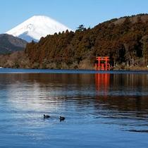 芦ノ湖から富士山を望む絶景