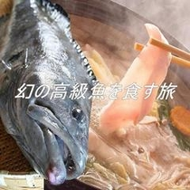 幻の高級魚を食す旅