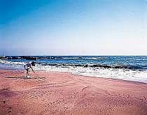 瀬戸浜海岸