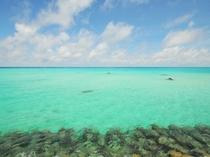 【周辺:下地空港前の海】エメラルドブルーの海が広がります