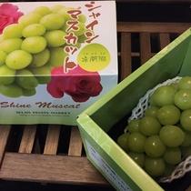 『よませ温泉朝市』にて夜間瀬の採れたて新鮮お野菜&果物を販売しております。(シャインマスカット9月)
