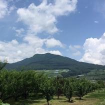 高社山と裾野に広がる夜間瀬の果樹園