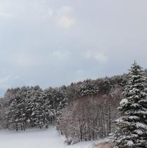 冬の幻想的なシーン お写真や絵画などごゆっくりいかがでしょうか。