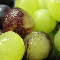 『よませ温泉朝市』にて美味しい季節の果物&新鮮お野菜を販売しております。巨峰&シャインマスカット秋
