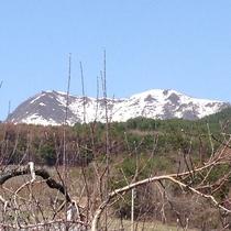 雪どけの高社山と果樹の芽吹き