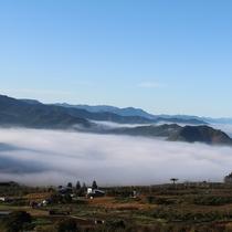 【雲海】早朝に出現する夜間瀬の幻想的な雲海(11月)