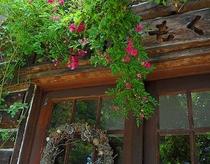 赤いバラの玄関