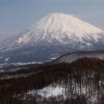 【〜 羊岳百景 〜 残雪の羊蹄山】