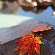 【紅葉の露天風呂】