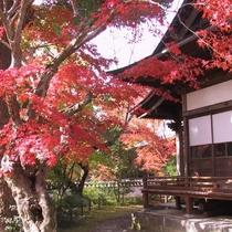 臼杵普現寺