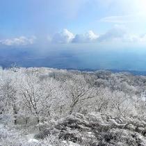 鶴見山樹氷