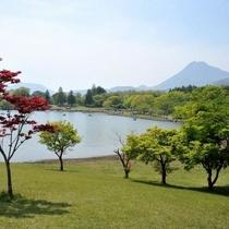 夏の志高湖