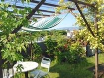夏の屋上・Summer roof garden