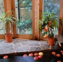 天然温泉リンゴ風呂・貸切にてのご利用です。