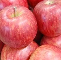 一年中天然温泉岩風呂に浮かぶ産地直送のりんごで癒し・・