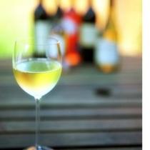 30種飲み放題プラン・ワインは4種(赤、白、山桃、ミカン)