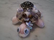 【ハイサイ♪】貝殻アート⑯