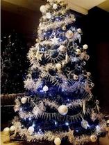 2016年クリスマスツリー★