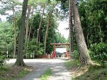 陣が岡公園,蜂神社
