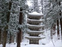雪の国宝羽黒山五重塔