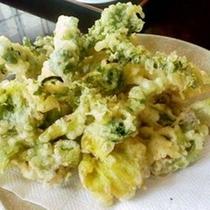 山菜の天ぷら(一例 時期により内容が異なります)