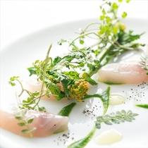 2016料理イメージ魚