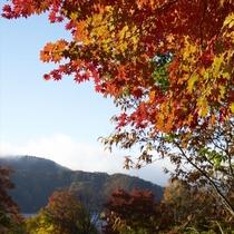 秋の野尻湖