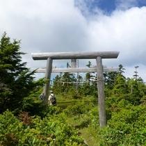 【夏】焼額山山頂鳥居