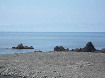 海辺の様子 5月