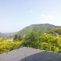 *4Fからの景色(初夏・5月)
