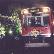 *夜も楽しみ深い「あじさい電車」美しい夜間ライトアップをお楽しみ下さい。
