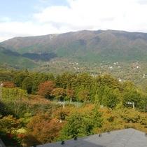 *4Fからの景色(秋・11月)