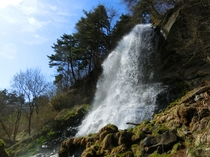 5月の乙女滝 横