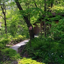 【庭園/初夏の風景】 四季折々の顔を覗かせる庭園。