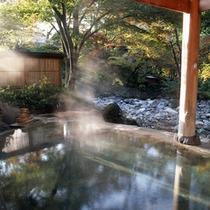 混浴露天風呂「せせらぎの湯」(新緑の景観)※女性専用時間あり