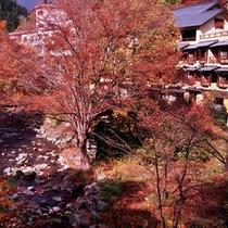 外観(紅葉が鮮やかな秋の風景)