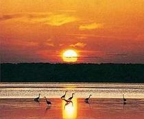 サロマ湖に昇る朝日。お部屋の窓から、朝日が見えます。