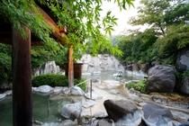 「とろとろ」とした植木の温泉に浸かって癒されよう。
