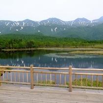 湖畔展望台までの往復利用 約40分(往復1.6km)