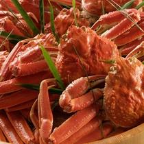 【バイキング】ずわい蟹
