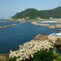 鶴岡市の海 アガリマス