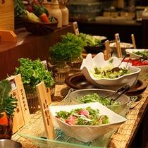 ●健菜美食ビュッフェレストラン「るぴなす」サラダバー
