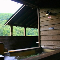 【露天風呂付コンドミニアム】若草(わかくさ)≪4名定員用≫〜自然を感じながら天然温泉を楽しむ〜